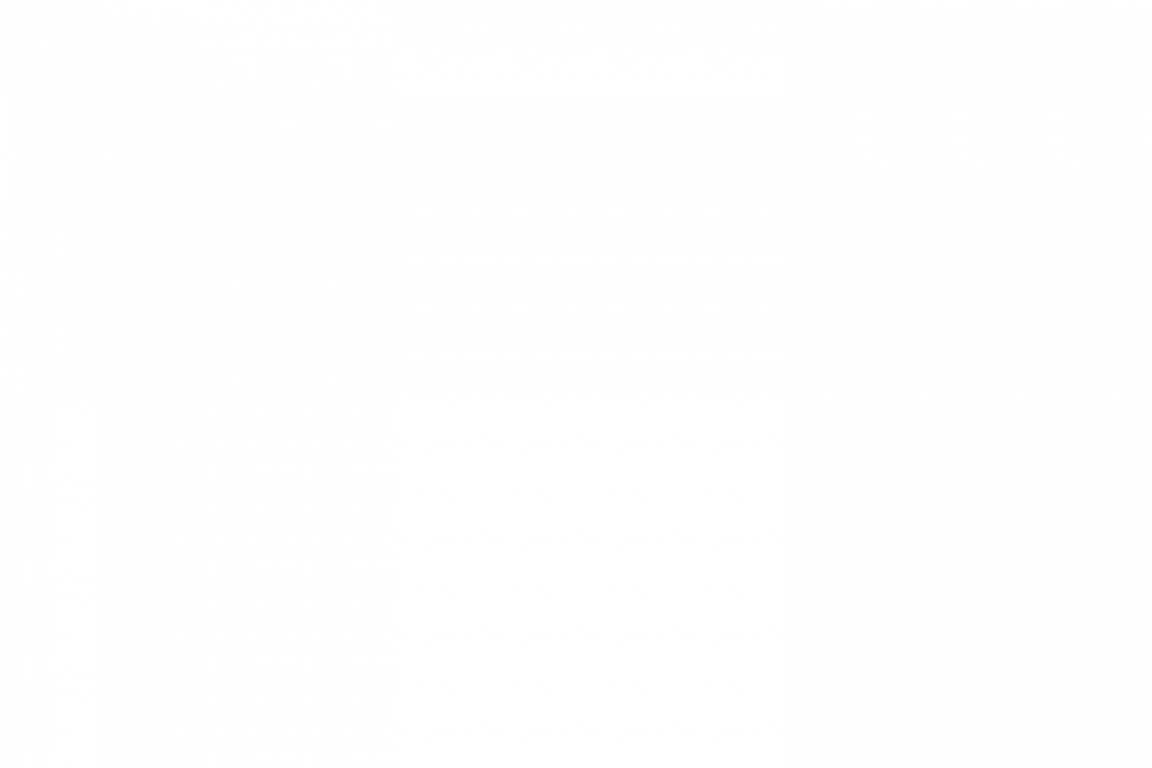 Jólamarkaður fjölskyldunnar
